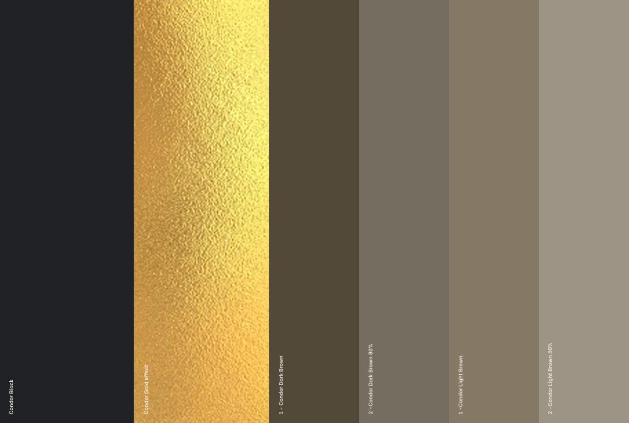 sebcatoire_1440x969_Branding_Condor_Colors