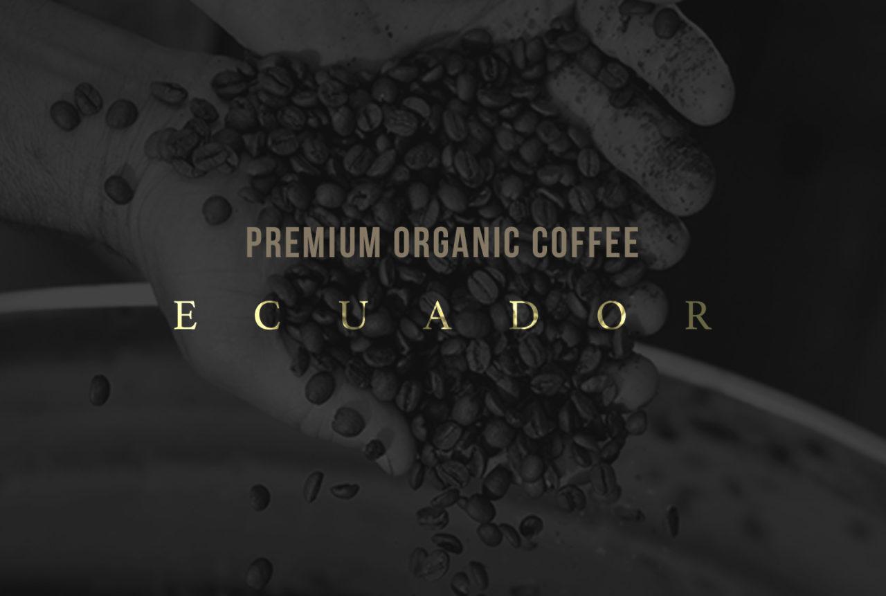 sebcatoire_1440x969_Branding_Condor_Grain