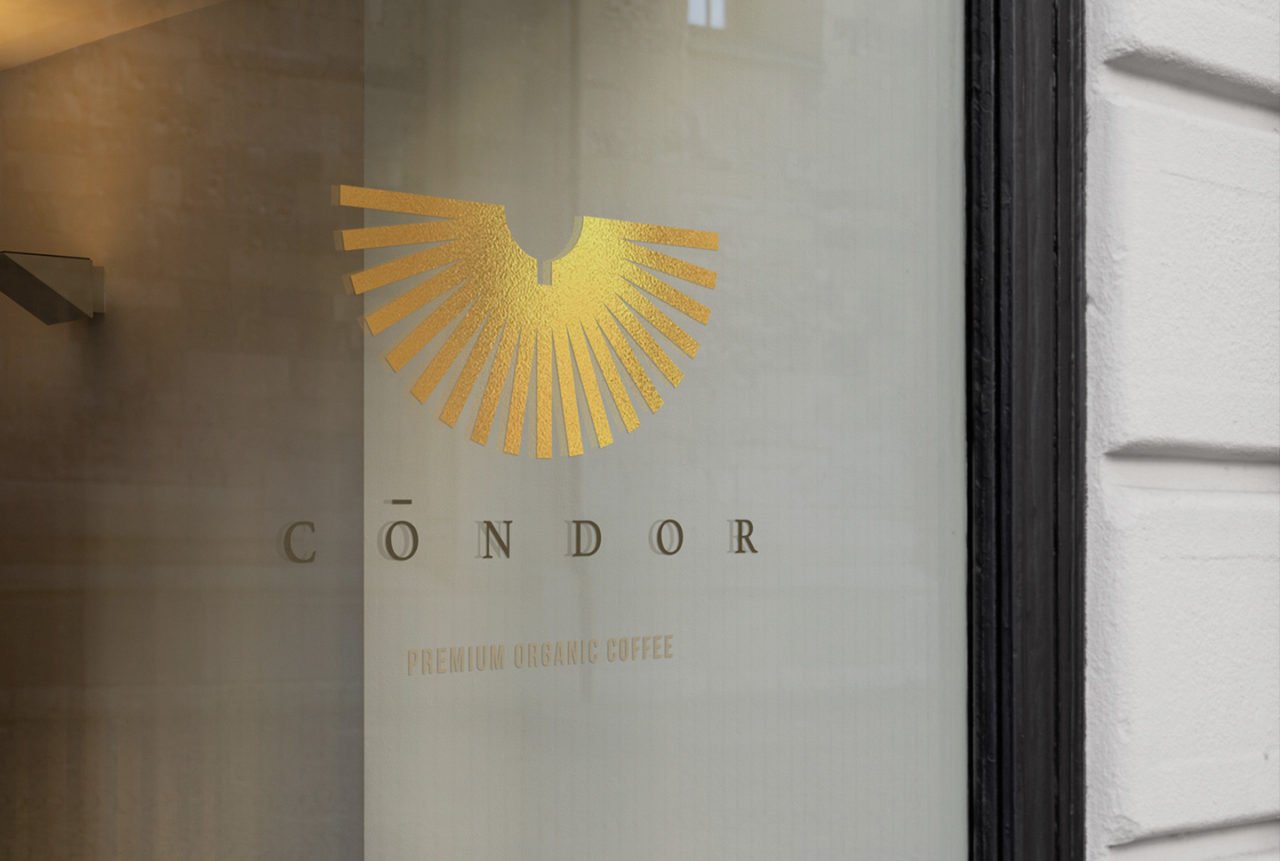 sebcatoire_1440x969_Branding_Condor_ShopFront