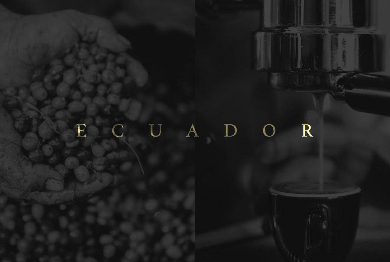 sebcatoire_1440x969_Branding_Condor_coffee&Grain